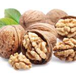 Грецкий орех: описание, польза и применение