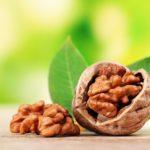 Грецкий орех, его полезные свойства и противопоказания