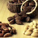 Бразильский орех — описание