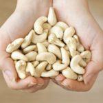 Кешью (Орех акажу) — доступная экзотика